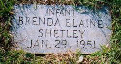 Brenda Elaine Shetley