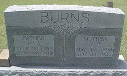Josephine Ella <I>Hearn</I> Burns