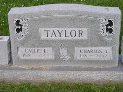 Charles J Taylor