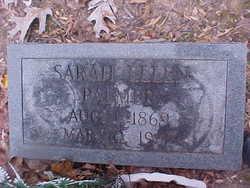 Sarah Ellen <I>Lewis</I> Palmer