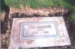 Nick Gallabarda
