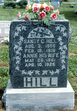 Annie Elizabeth <I>Tackett</I> Hill