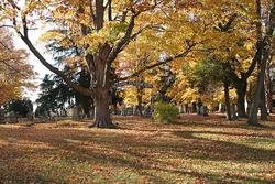 Salem-Walker Cemetery