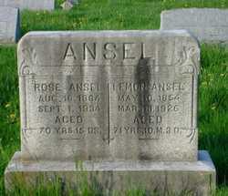 Rose <I>Fitterling</I> Ansel