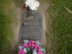 Sherry Ann <I>Ping</I> Miles