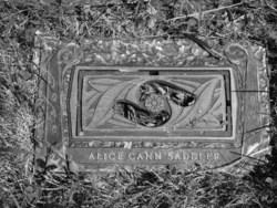 Alice McGiffin <I>Cann</I> Saddler