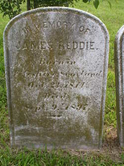 James Reddie