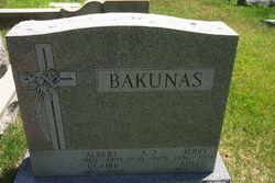 Albert John Bakunas, Jr