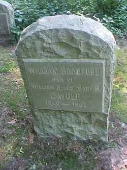William Bradford D'Wolf, Jr