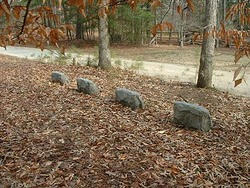 Robb-Taylor Cemetery