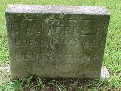 Andrew Johnson Acree