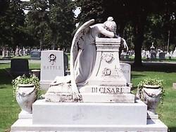 Lucia A. DiCesare