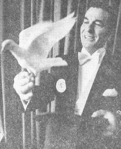 Harry Leon Collins
