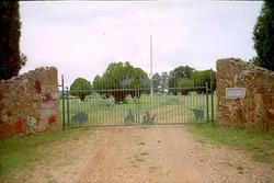 Cowboy Cemetery