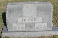 Joseph D Haynes
