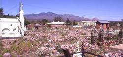 Tubac Cemetery