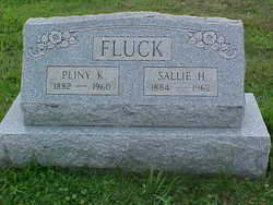 Pliny K Fluck