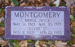 Merle Joyce Montgomery