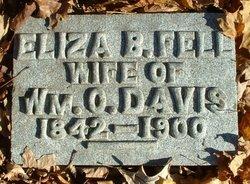 Eliza Brown <I>Fell</I> Davis