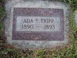 Ada E. Tripp