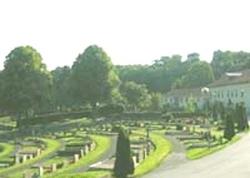 Västra Kyrkogården (Western Cemetery)