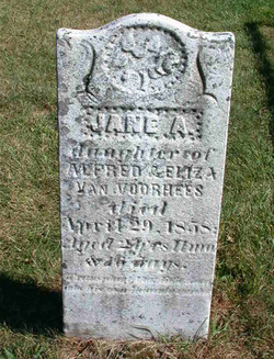Jane A. Van Voorhees