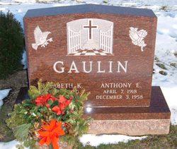 Anthony E Gaulin