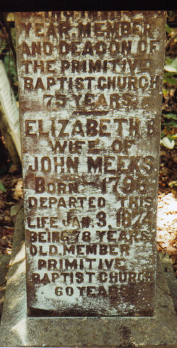 Elizabeth Burnes <I>Lane</I> Meeks