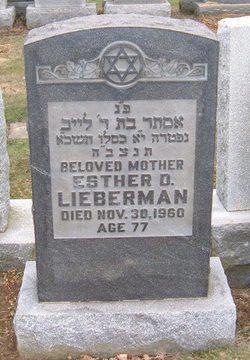 Esther D Lieberman