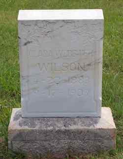 Clara L <I>Webster</I> Wilson