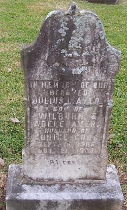 Julius L Ayer