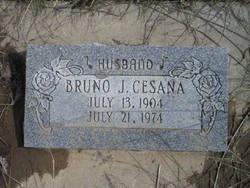 Bruno James Cesana