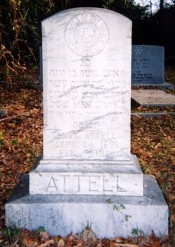 Max Attell