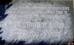 David H Luna