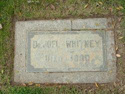 Dr Joel L Whitney