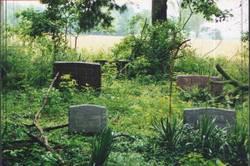 Brayshaw Cemetery