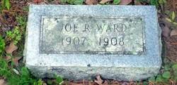 Joe R Ward