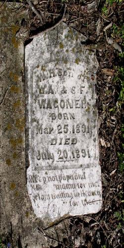 William Hayes Wagoner