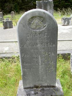 Dray E. Andersen