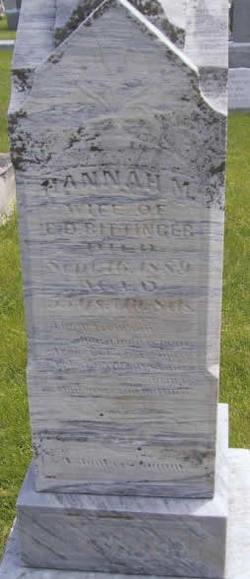 Hannah M Bittinger
