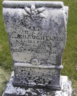 Ella Haughtelin