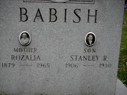 Stanley R Babish