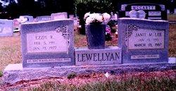 Janie Marteal <I>Lee</I> Lewellyan
