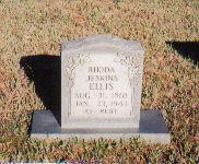 Rhoda <I>Jenkins</I> Ellis