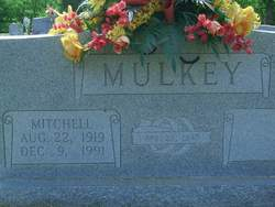Mitchell Mulkey