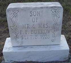 Son Of P F Burrow