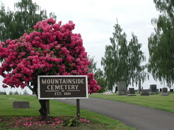 Mountainside Cemetery