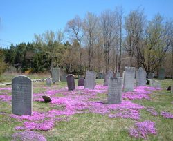 Olde Mansfield Center Cemetery