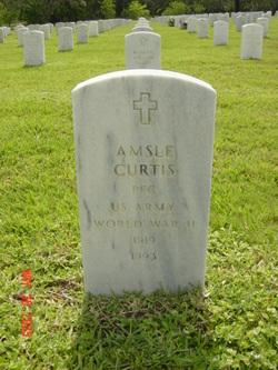 Amsle Curtis
