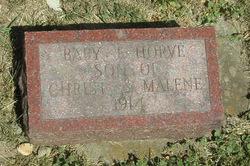 """Baby """"Torvel"""" Horve"""